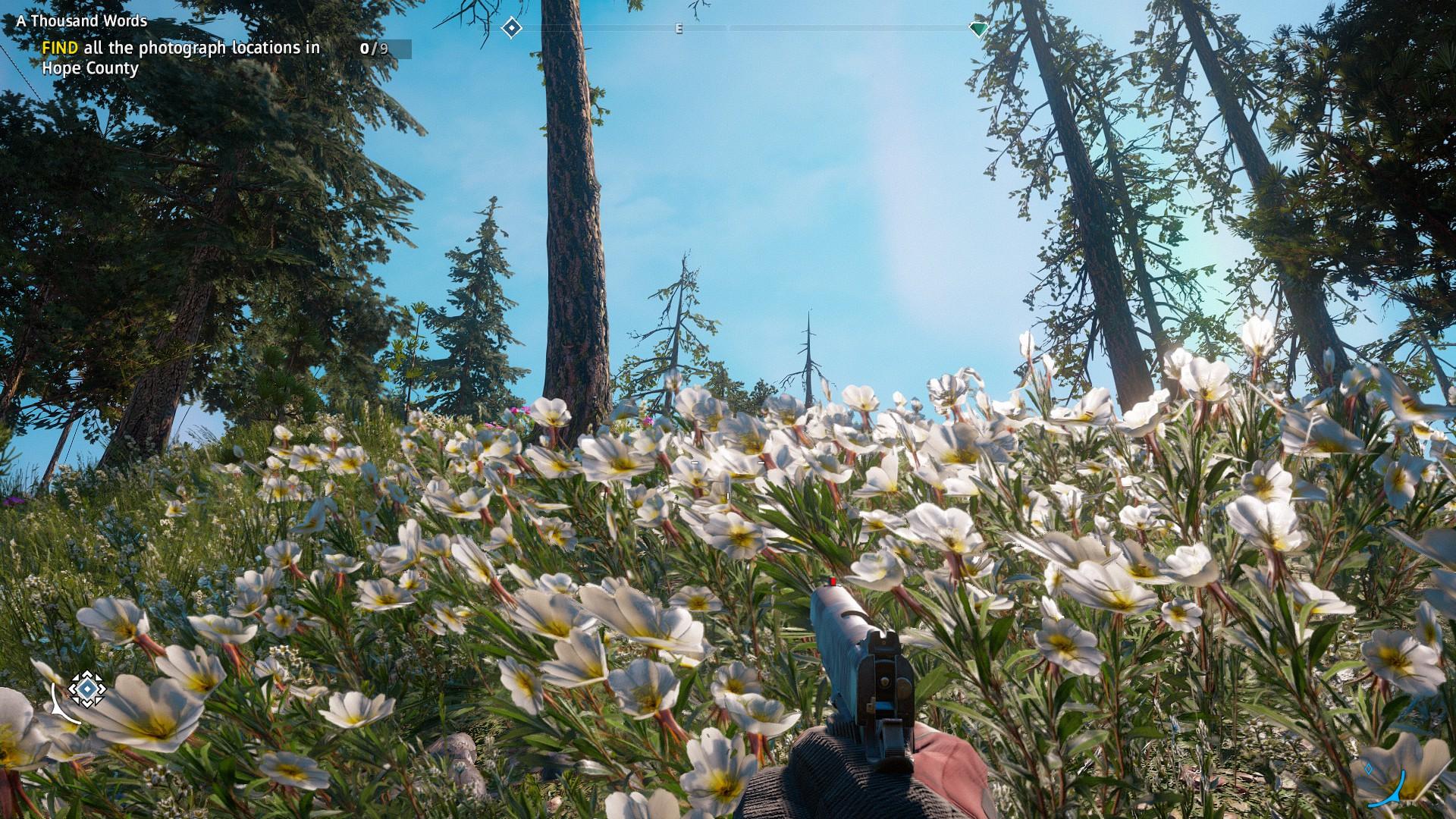 Far Cry® New Dawn2019-2-23-14-2-51