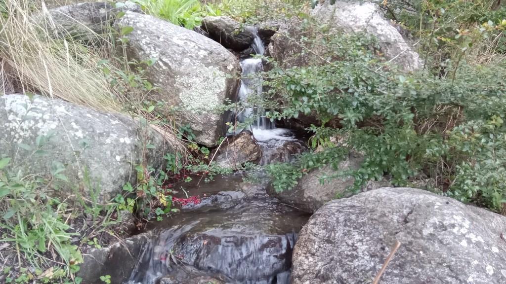 Alcatel 3H Foto en el arroyo