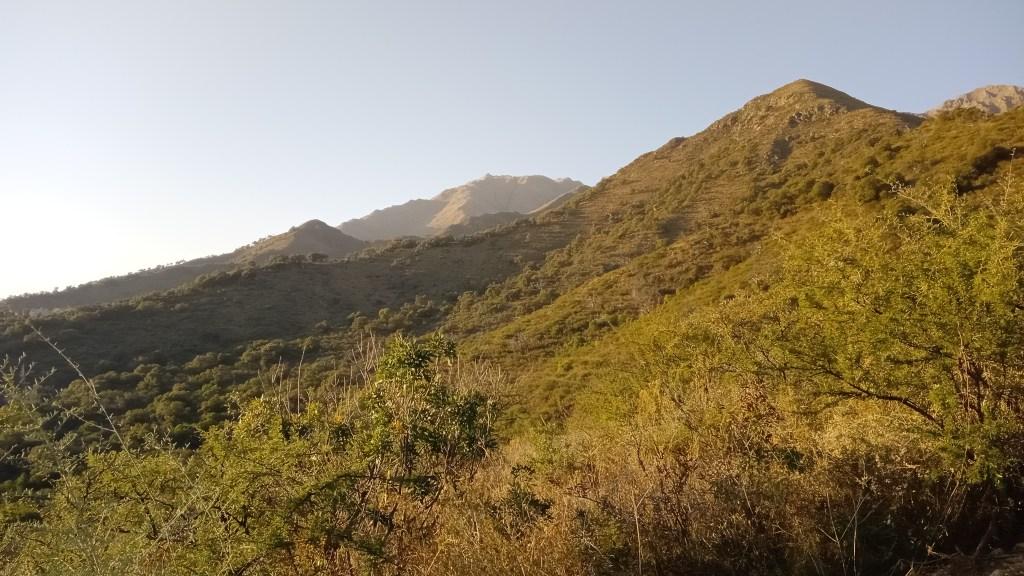 Alcatel 3H Foto en la Sierras